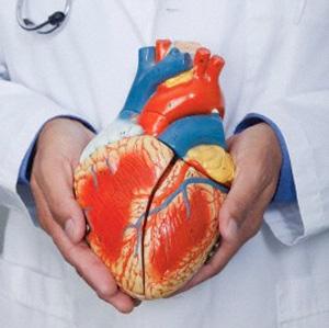 riabilitazione cardiologica Roma e provincia